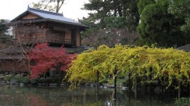 Kyoto Wallpaper Download