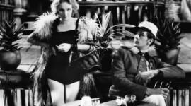 Marlene Dietrich Desktop Wallpaper HD