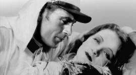 Marlene Dietrich Wallpaper Download