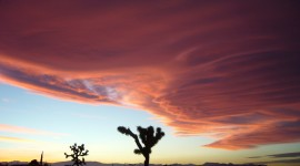 Mojave Desert Desktop Wallpaper