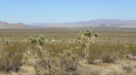 Mojave Desert Wallpaper 1080p