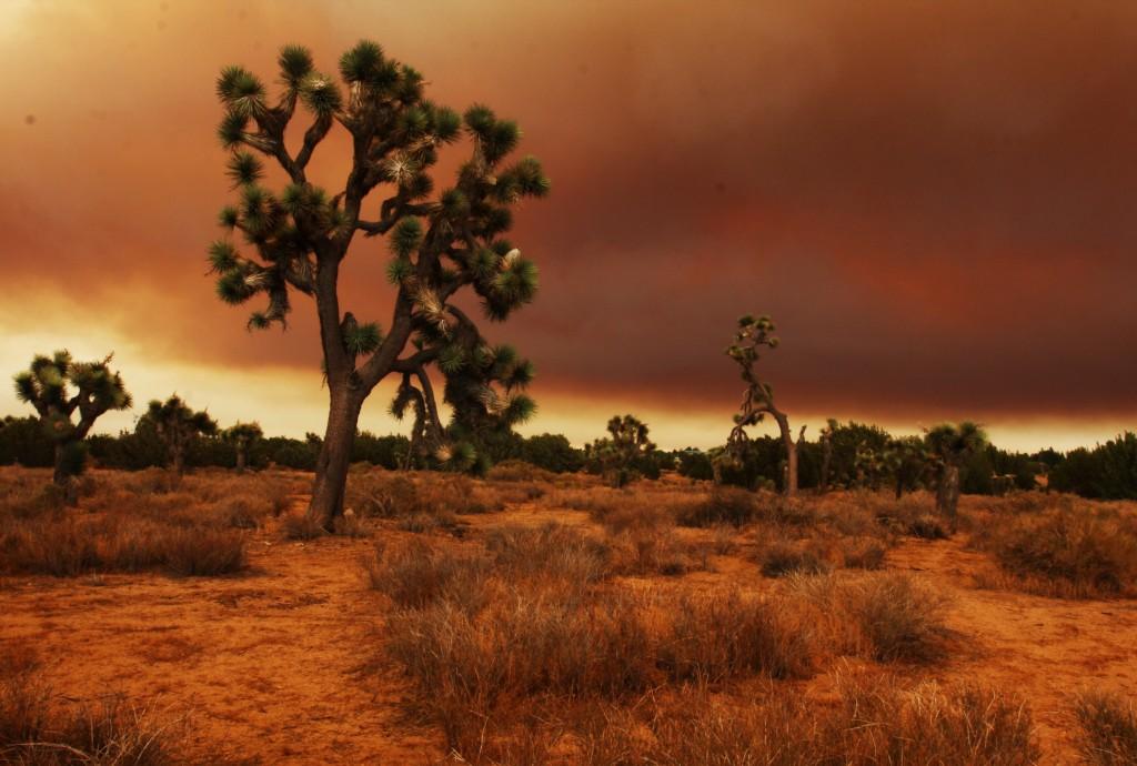 Mojave Desert wallpapers HD
