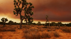 Mojave Desert Wallpaper For PC