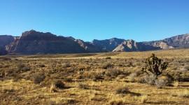 Mojave Desert Wallpaper Gallery