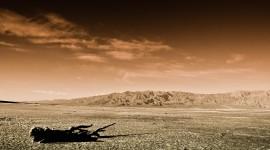 Mojave Desert Wallpaper HQ