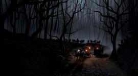 Night Forest Desktop Wallpaper Free
