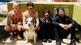 Red Hot Chili Peppers High Quality Wallpaper