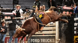 Rodeo Wallpaper Download Free