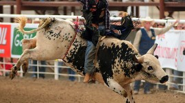 Rodeo Wallpaper For PC