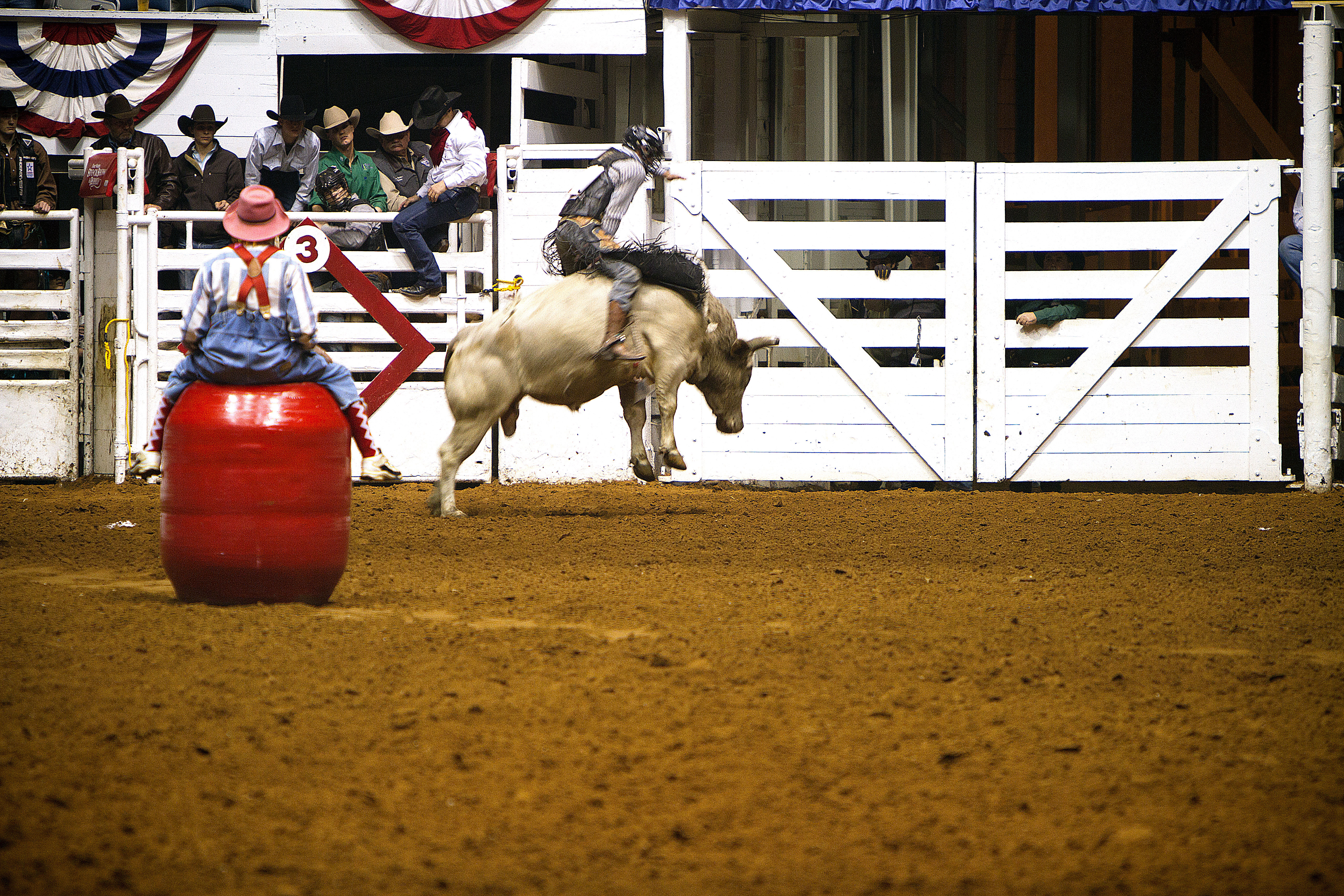 Fort Worth Rodeo >> Rodeo Wallpapers High Quality | Download Free