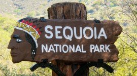 Sequoia National Park Wallpaper Gallery