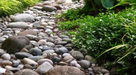 Stone Garden Wallpaper For IPhone