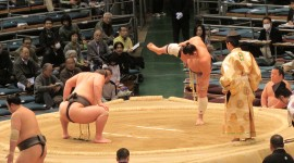 Sumo Wrestler Desktop Wallpaper For PC