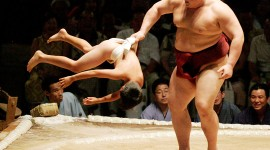 Sumo Wrestler Photo Download