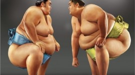 Sumo Wrestler Wallpaper