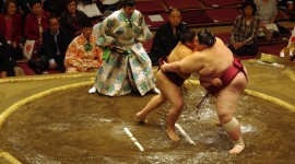 Sumo Wrestler Wallpaper Download