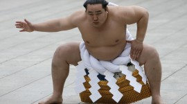Sumo Wrestler Wallpaper For Desktop