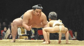 Sumo Wrestler Wallpaper For PC