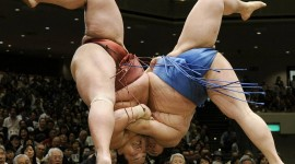 Sumo Wrestler Wallpaper Free