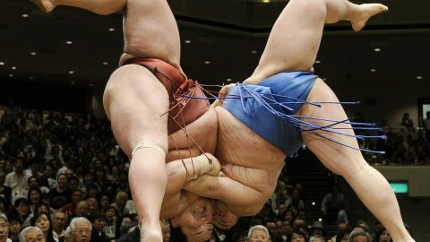 Sumo Wrestler wallpapers high quality