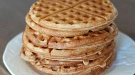 Waffles Photo#1