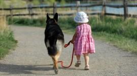 Walk With A Dog Desktop Wallpaper