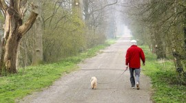 Walk With A Dog Wallpaper Download Free