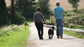 Walk With A Dog Wallpaper High Definition