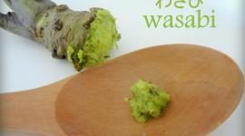 Wasabi Wallpaper Download Free
