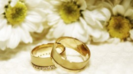 Wedding Rings Wallpaper HD