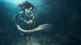 4K Divers Best Wallpaper