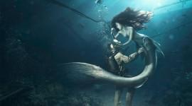 4K Divers Desktop Wallpaper HD