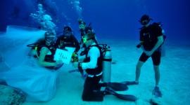 4K Divers Photo