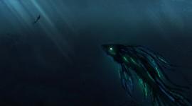 4K Divers Wallpaper 1080p