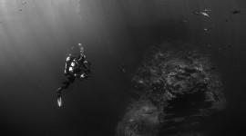 4K Divers Wallpaper Download
