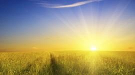 4K Rising Suns Wallpaper Download Free