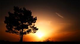 4K Rising Suns Wallpaper Full HD