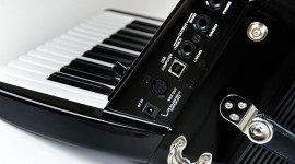 Accordionist Desktop Wallpaper For PC