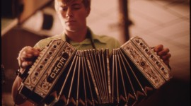 Accordionist Photo Download