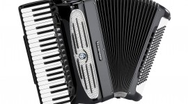Accordionist Wallpaper Download