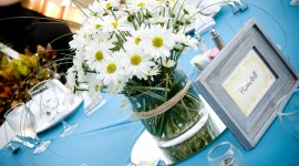 Daisies On The Table Wallpaper
