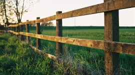 Fence Wallpaper Download Free
