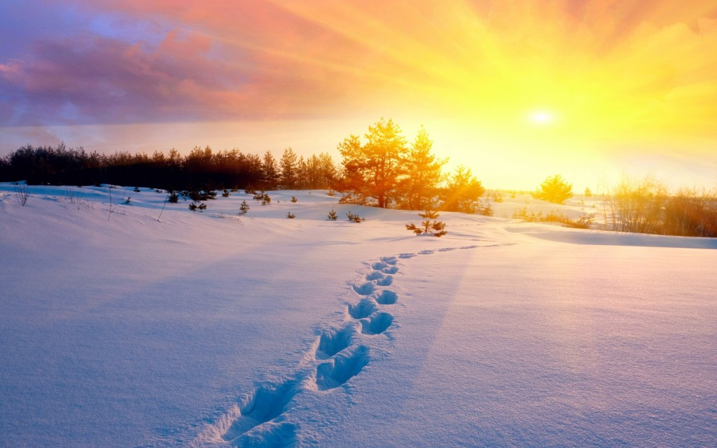 Footprints In The Snow wallpapers HD