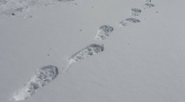Footprints In The Snow Photo Download