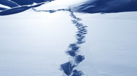Footprints In The Snow Wallpaper Download