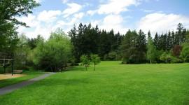 Lawn Wallpaper 1080p