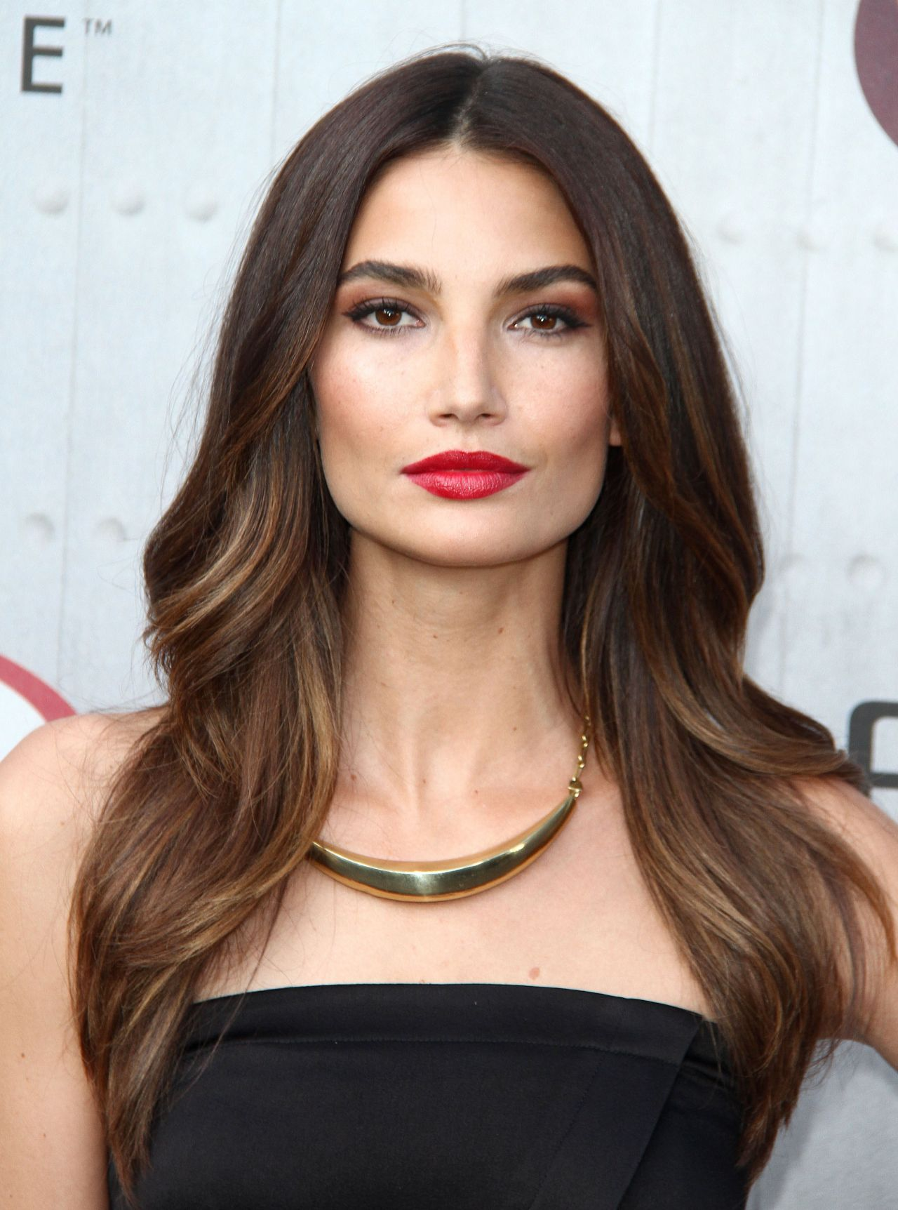 Lily Aldridge Wallpapers High Quality Download Free