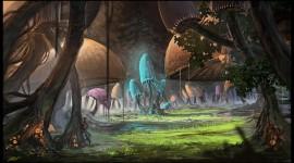 Mushroom Glade Image
