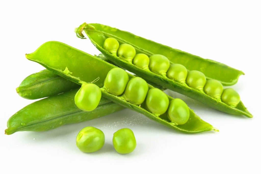 Pea wallpapers HD