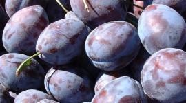 Prunes Photo Free